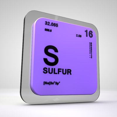 Sulpher Reducing Bacteria (SRB)